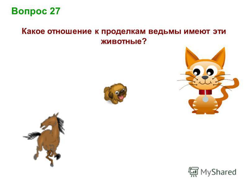 Вопрос 27 Какое отношение к проделкам ведьмы имеют эти животные?