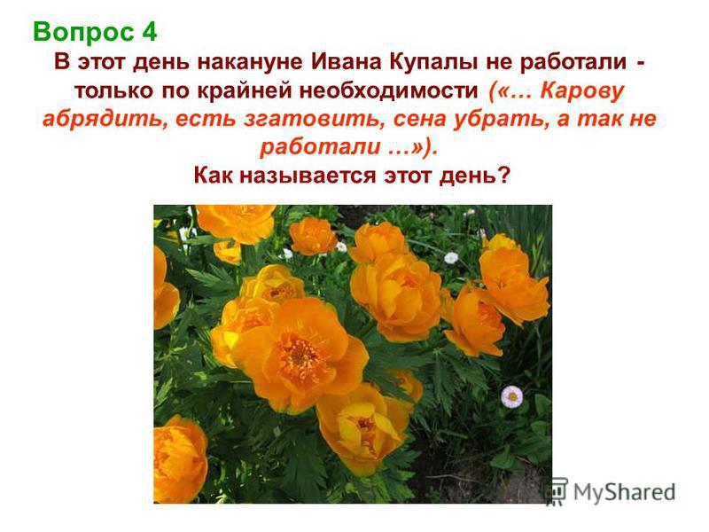 Вопрос 4 В этот день накануне Ивана Купалы не работали - только по крайней необходимости («… Карову обрядить, есть згатовить, сена убрать, а так не работали …»). Как называется этот день?