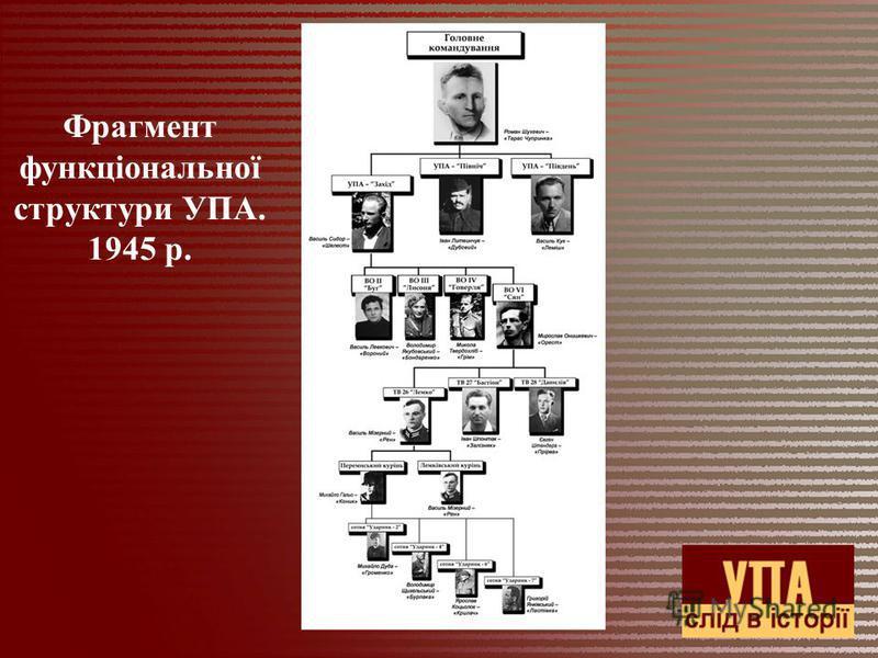 Фрагмент функціональної структури УПА. 1945 р.