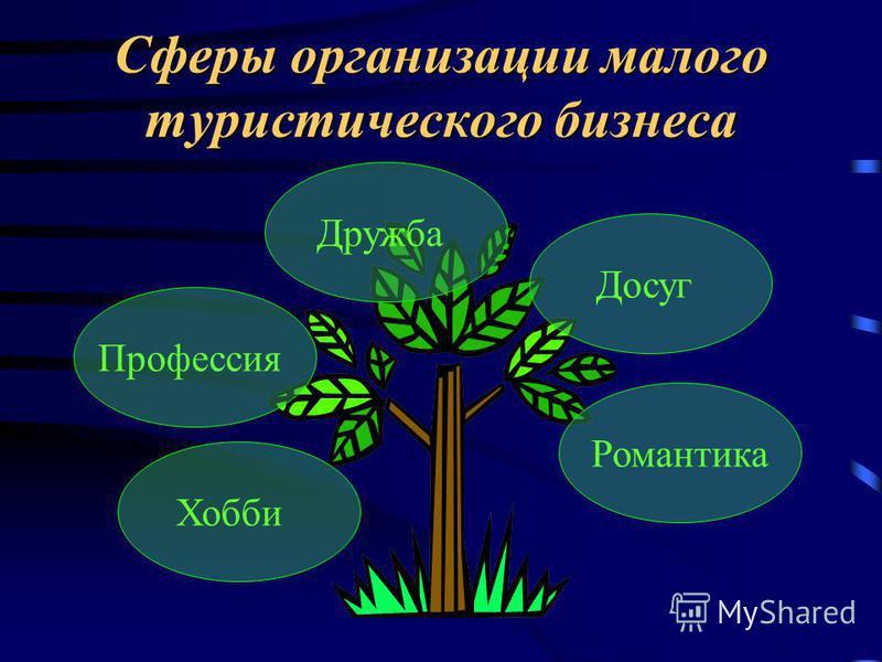 Сферы организации малого туристического бизнеса Досуг Профессия Романтика Дружба Хобби