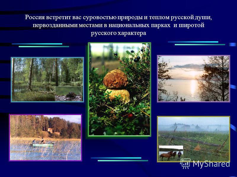 Россия встретит вас суровостью природы и теплом русской души, первозданными местами в национальных парках и широтой русского характера