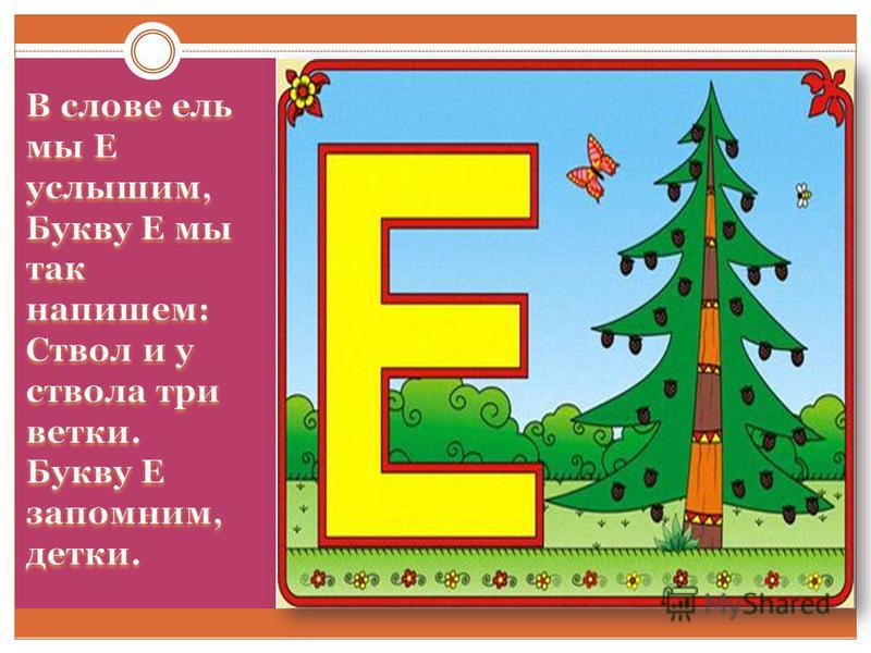 Буква Е – еловый лес, Ели – чудо из чудес.