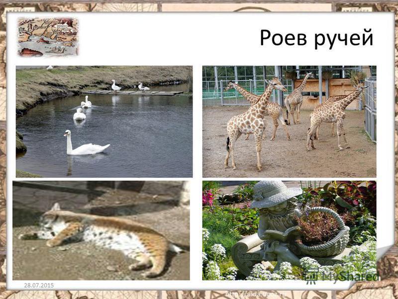 Роев ручей 28.07.20159