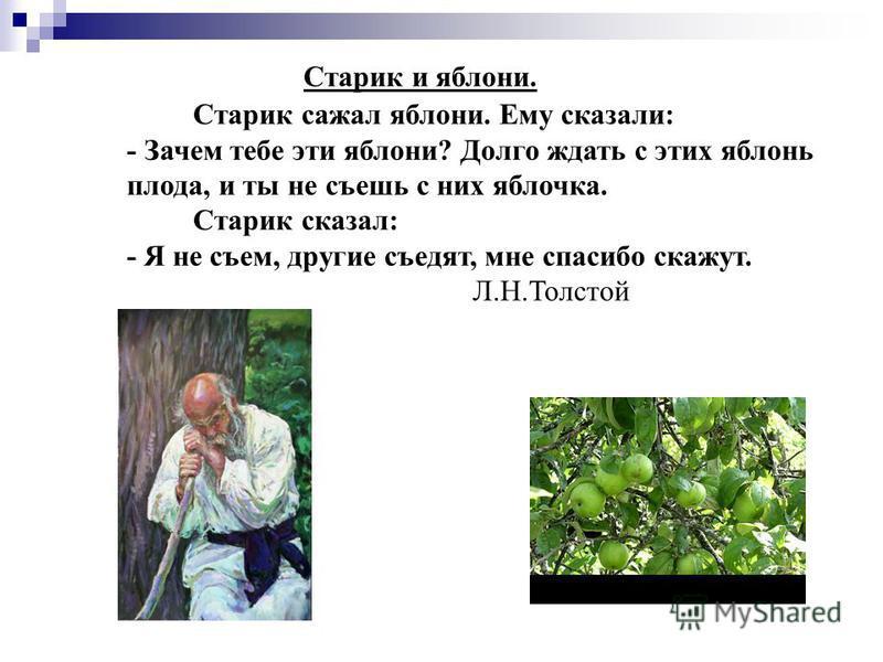 Старик и яблони. Старик сажал яблони. Ему сказали: - Зачем тебе эти яблони? Долго ждать с этих яблонь плода, и ты не съешь с них яблочка. Старик сказал: - Я не съем, другие съедят, мне спасибо скажут. Л.Н.Толстой
