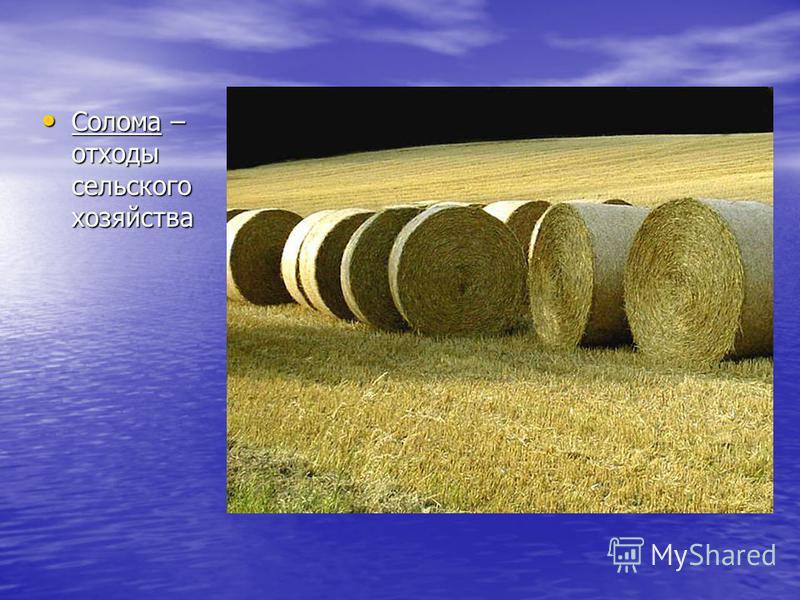 Солома – отходы сельского хозяйства Солома – отходы сельского хозяйства