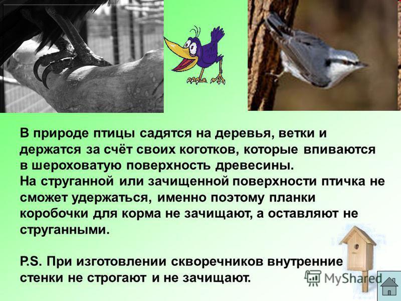 В природе птицы садятся на деревья, ветки и держатся за счёт своих коготков, которые впиваются в шероховатую поверхность древесины. На струганной или зачищенной поверхности птичка не сможет удержаться, именно поэтому планки коробочки для корма не зач