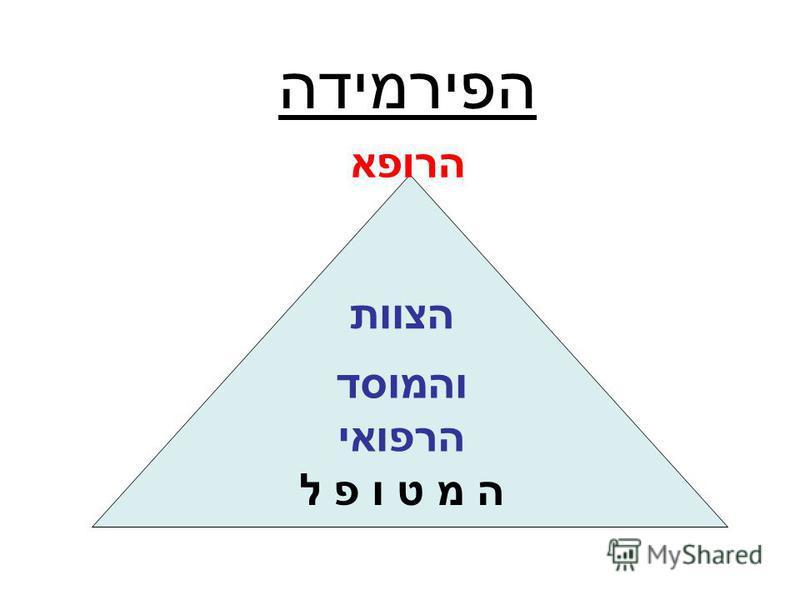 הפירמידה ה מ ט ו פ ל והמוסד הרפואי הרופא הצוות