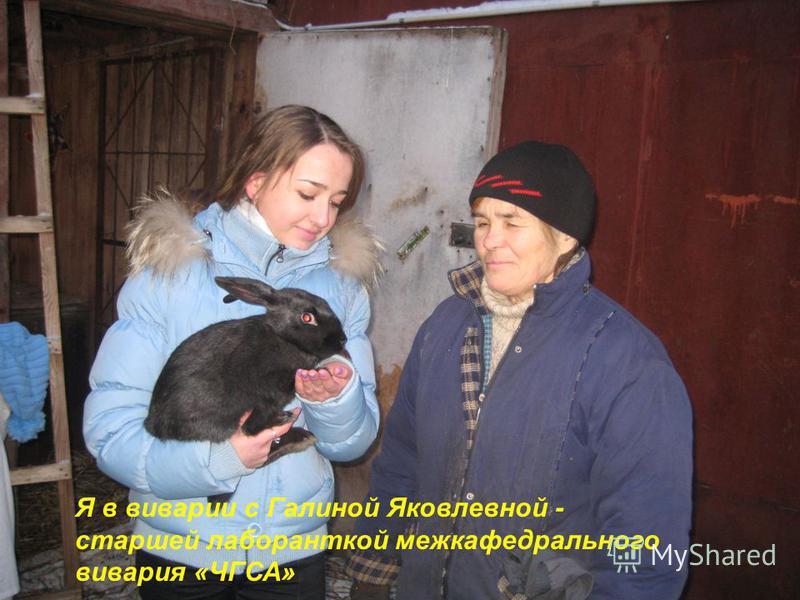 Я в виварии с Галиной Яковлевной - старшей лаборанткой меж кафедрального вивария «ЧГСА»