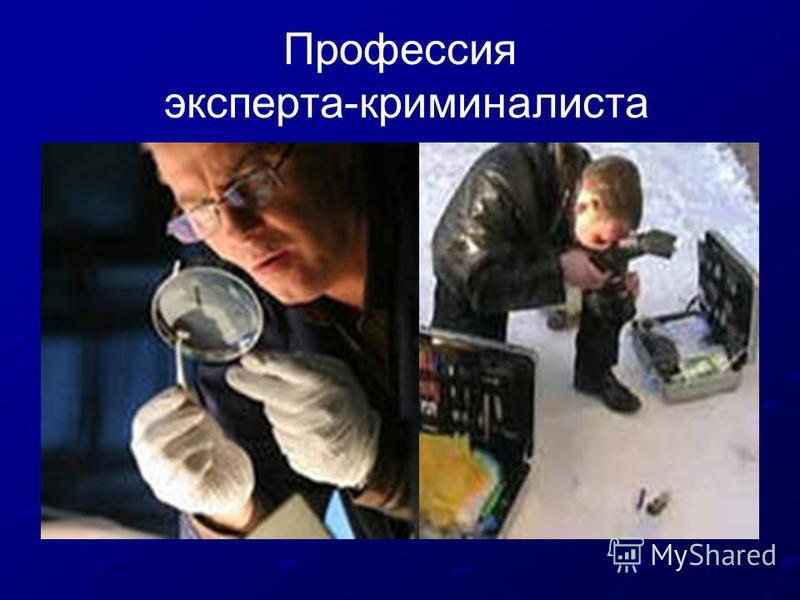Профессия эксперта-криминалиста