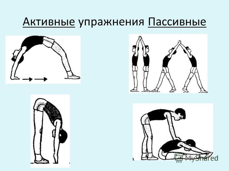 Активные упражнения Пассивные