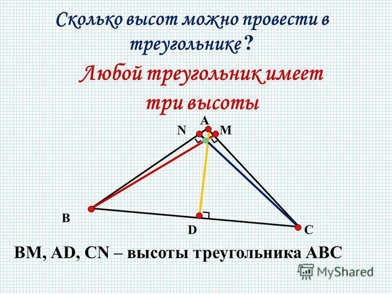 Любой треугольник имеет три высоты А N В М DС ВМ, АD, CN – высоты треугольника АВС Сколько высот можно провести в треугольнике ?