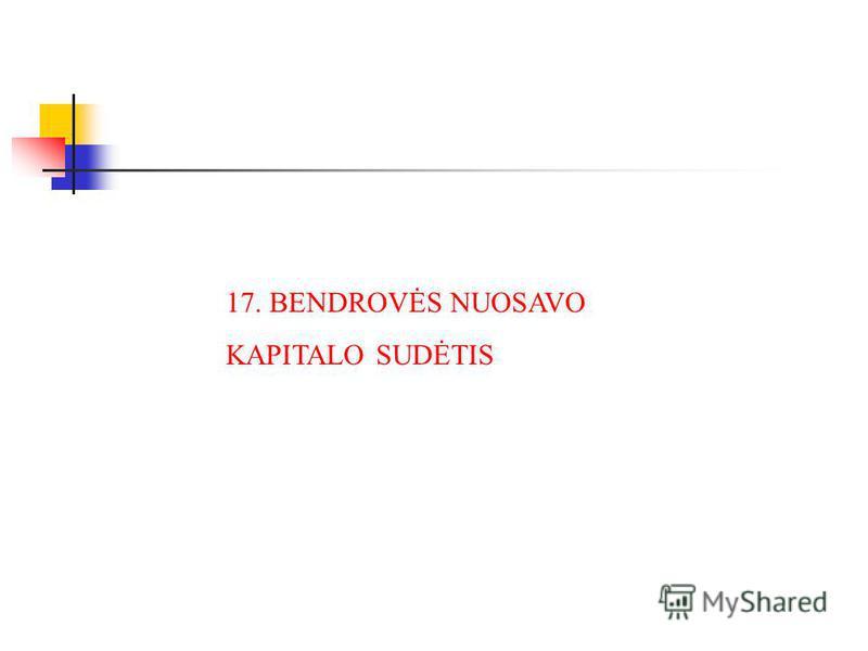 17. BENDROVĖS NUOSAVO KAPITALO SUDĖTIS