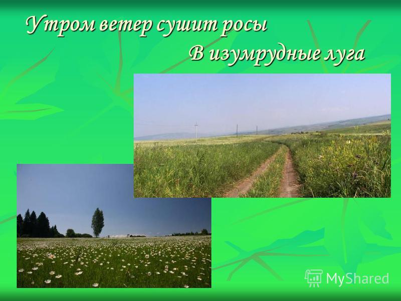 Утром ветер сушит росы В изумрудные луга
