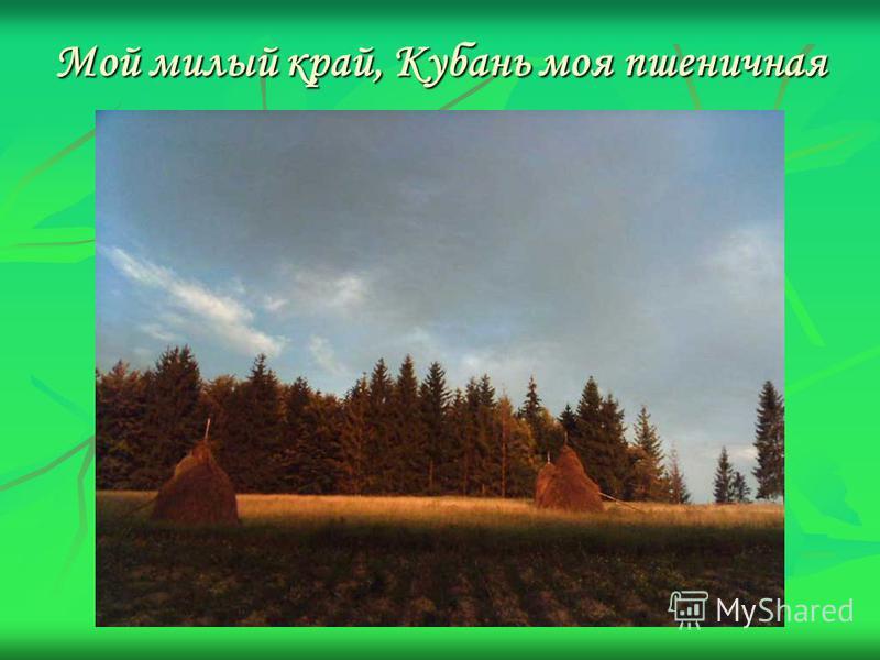 Мой милый край, Кубань моя пшеничная