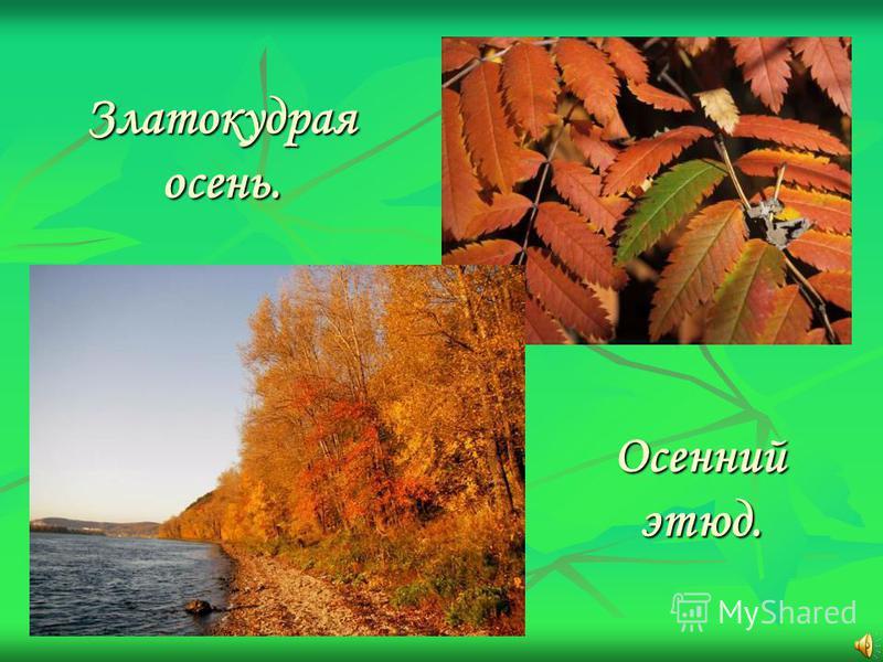 Златокудрая осень. Осенний этюд.