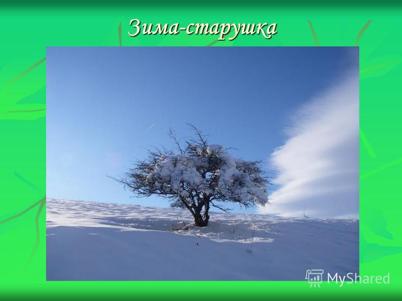 Зима-старушка