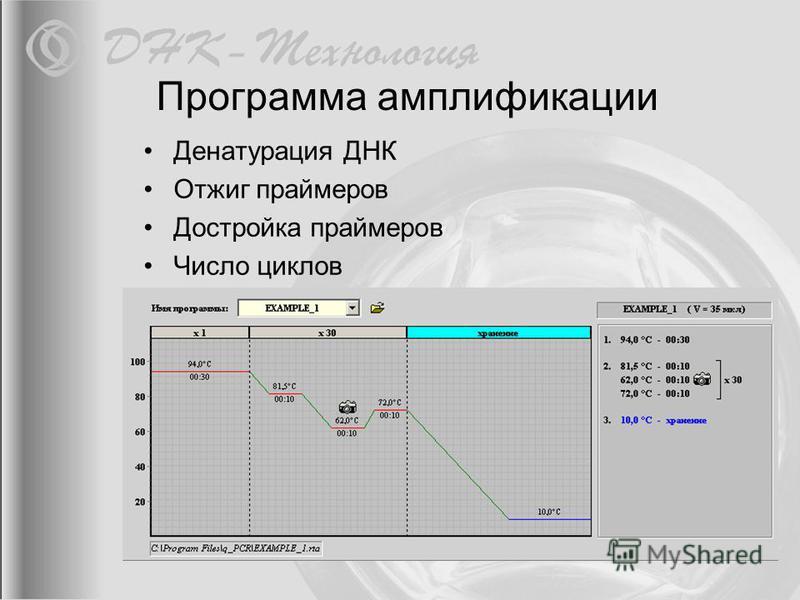 Программа амплификации Денатурация ДНК Отжиг праймеров Достройка праймеров Число циклов