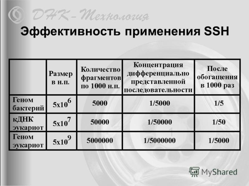 Эффективность применения SSH
