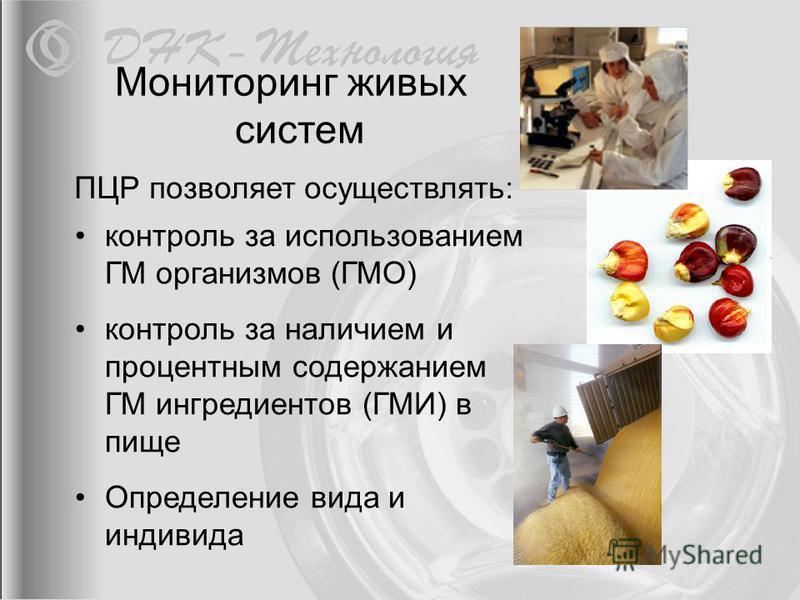 контроль за использованием ГМ организмов (ГМО) контроль за наличием и процентным содержанием ГМ ингредиентов (ГМИ) в пище Определение вида и индивида ПЦР позволяет осуществлять: Мониторинг живых систем