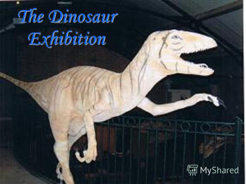 The Dinosaur Exhibition