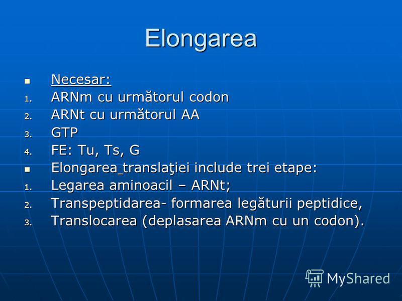 Elongarea Necesar: Necesar: 1. ARNm cu următorul codon 2. ARNt cu următorul AA 3. GTP 4. FE: Tu, Ts, G Elongarea translaţiei include trei etape: Elongarea translaţiei include trei etape: 1. Legarea aminoacil – ARNt; 2. Transpeptidarea- formarea legăt