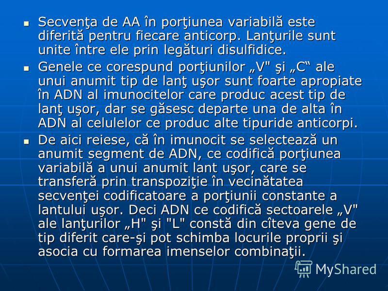 Secvenţa de AA în porţiunea variabilă este diferită pentru fiecare anticorp. Lanţurile sunt unite între ele prin legături disulfidice. Secvenţa de AA în porţiunea variabilă este diferită pentru fiecare anticorp. Lanţurile sunt unite între ele prin le