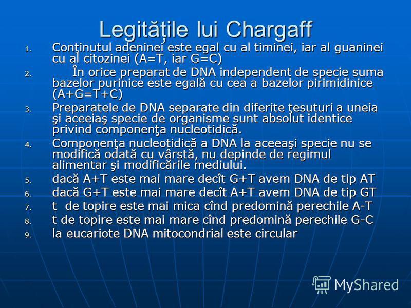 Legităţile lui Chargaff 1. Conţinutul adeninei este egal cu al timinei, iar al guaninei cu al citozinei (A=T, iar G=C) 2. În orice preparat de DNA independent de specie suma bazelor purinice este egală cu cea a bazelor pirimidinice (A+G=T+C) 3. Prepa