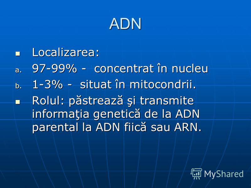 ADN Localizarea: Localizarea: a. 97-99% - concentrat în nucleu b. 1-3% - situat în mitocondrii. Rolul: păstrează şi transmite informaţia genetică de la ADN parental la ADN fiică sau ARN. Rolul: păstrează şi transmite informaţia genetică de la ADN par