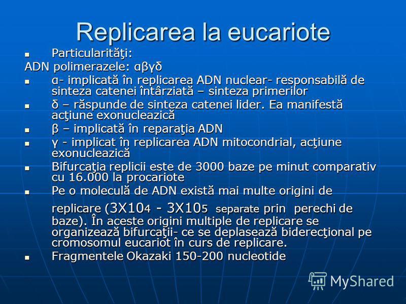 Replicarea la eucariote Particularităţi: Particularităţi: ADN polimerazele: αβγδ α- implicată în replicarea ADN nuclear- responsabilă de sinteza catenei întârziată – sinteza primerilor α- implicată în replicarea ADN nuclear- responsabilă de sinteza c
