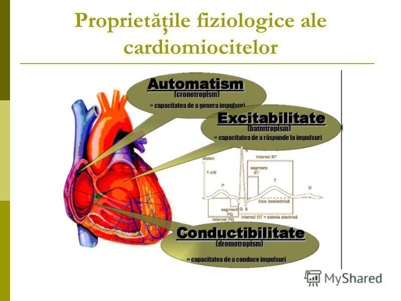 Proprietăţile fiziologice ale cardiomiocitelor