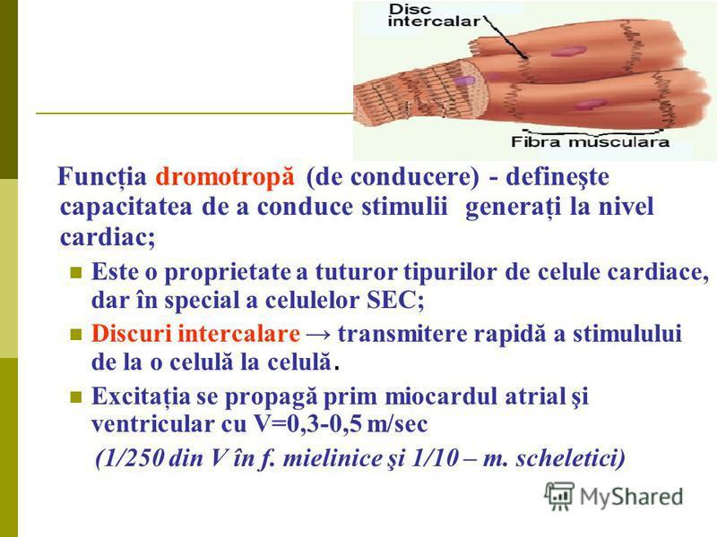 Funcţia dromotropă (de conducere) - defineşte capacitatea de a conduce stimulii generaţi la nivel cardiac; Este o proprietate a tuturor tipurilor de celule cardiace, dar în special a celulelor SEC; Discuri intercalare transmitere rapidă a stimulului