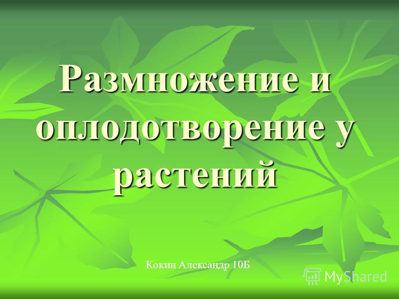 Размножение и оплодотворение у растений Кокин Александр 10Б