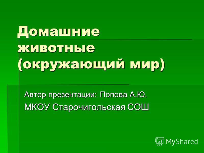 Домашние животные (окружающий мир) Автор презентации: Попова А.Ю. МКОУ Старочигольская СОШ
