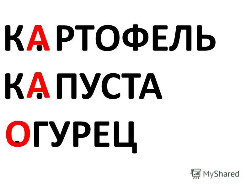 К. РТОФЕЛЬ К. ПУСТА. ГУРЕЦ А А О