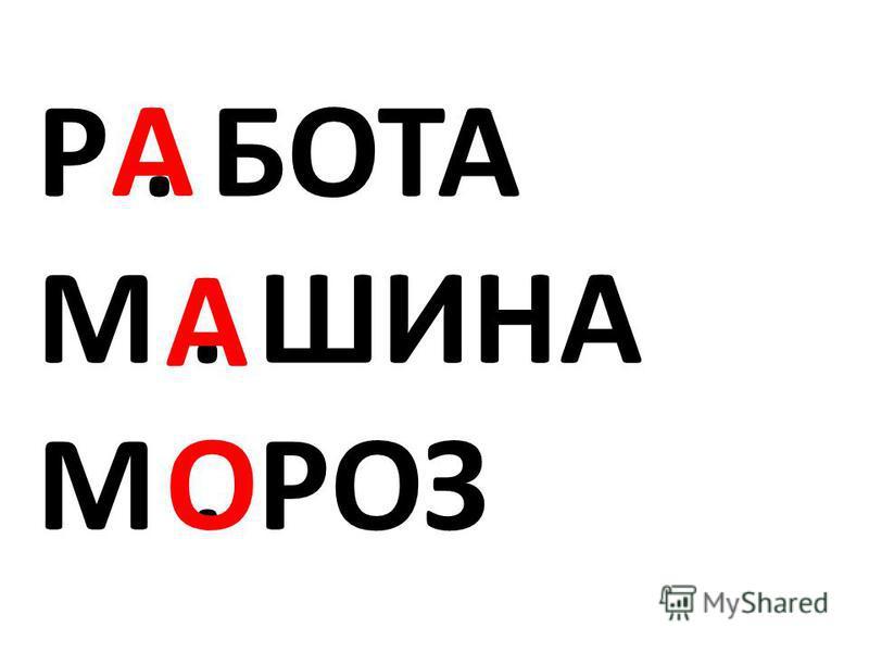 Р. БОТА М. ШИНА М. РОЗ А О А