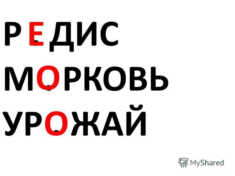 Р. ДИС М. РКОВЬ УР. ЖАЙ О О Е
