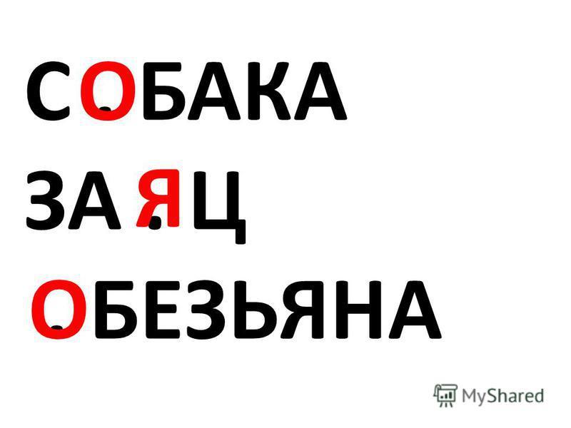 С. БАКА ЗА. Ц. БЕЗЬЯНА О Я О