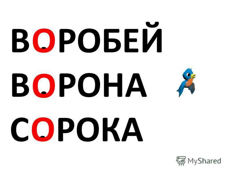 В. РОБЕЙ В. РОНА С. РОКА О О О