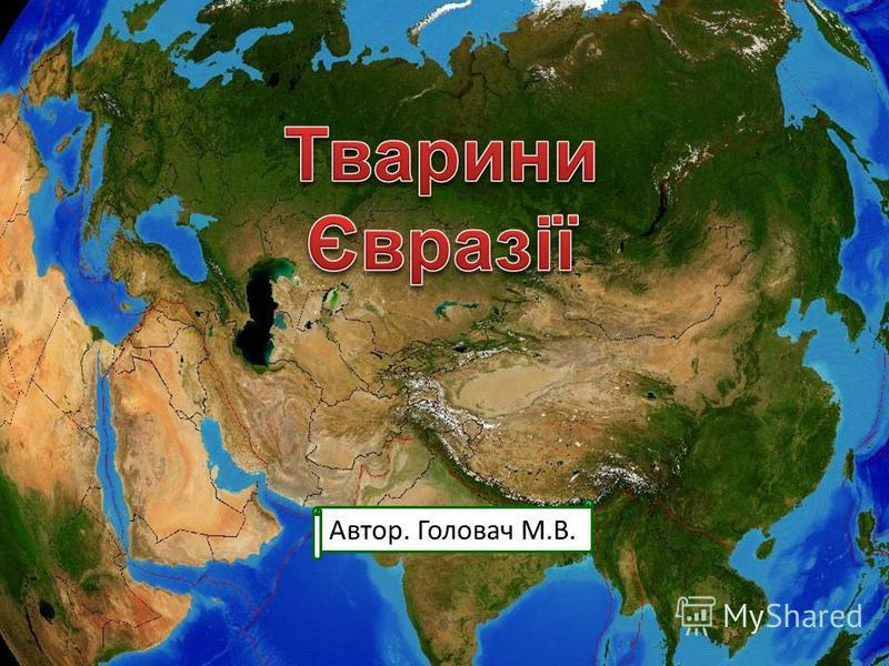 Автор. Головач М.В.