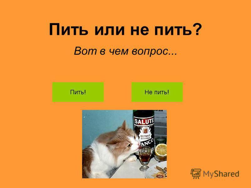 Пить или не пить? Вот в чем вопрос... Пить!Не пить!