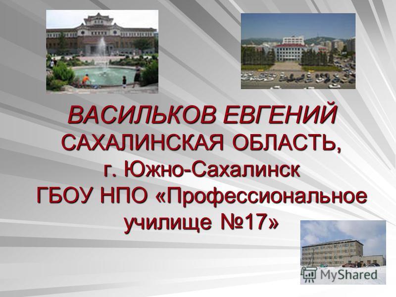 ВАСИЛЬКОВ ЕВГЕНИЙ САХАЛИНСКАЯ ОБЛАСТЬ, г. Южно-Сахалинск ГБОУ НПО «Профессиональное училище 17»