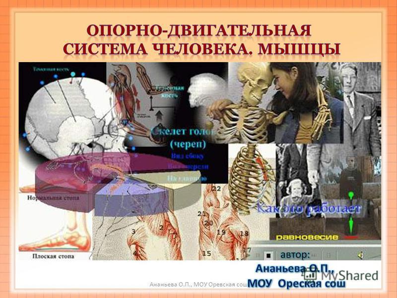 Ананьева О.П., МОУ Оревская сош