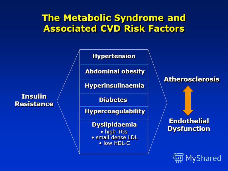 The Metabolic Syndrome and Associated CVD Risk Factors AtherosclerosisAtherosclerosis Endothelial Dysfunction Hypertension Abdominal obesity Hyperinsulinaemia Dyslipidaemia high TGs small dense LDL low HDL-C Diabetes Hypercoagulability Insulin Resist