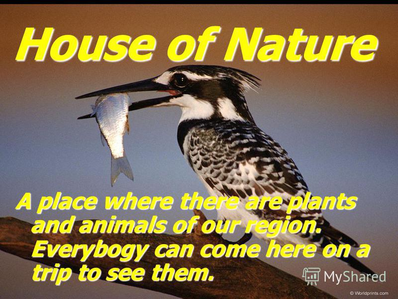 House of Nature A place where there are plants and animals of our region. Everybogy can come here on a trip to see them.
