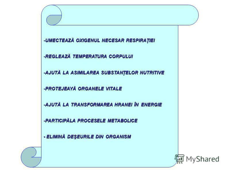 -UMECTEAZĂ OXIGENUL NECESAR RESPIRAŢIEI -REGLEAZĂ TEMPERATURA CORPULUI -AJUTĂ LA ASIMILAREA SUBSTANŢELOR NUTRITIVE -PROTEJEAYĂ ORGANELE VITALE -AJUTĂ LA TRANSFORMAREA HRANEI ÎN ENERGIE -PARTICIPĂLA PROCESELE METABOLICE - ELIMINĂ DEŞEURILE DIN ORGANIS