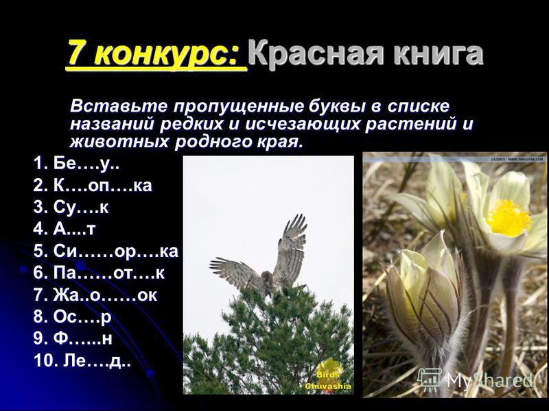 7 конкурс: Красная книга Вставьте пропущенные буквы в списке названий редких и исчезающих растений и животных родного края. 1. Бе….у.. 2. К….оп….ка 3. Су….к 4. А....т 5. Си……ор….ка 6. Па……от….к 7. Жа..о……ок 8. Ос….р 9. Ф…...н 10. Ле….д..