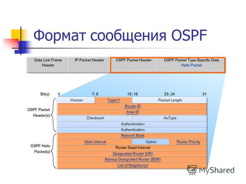 Формат сообщения OSPF