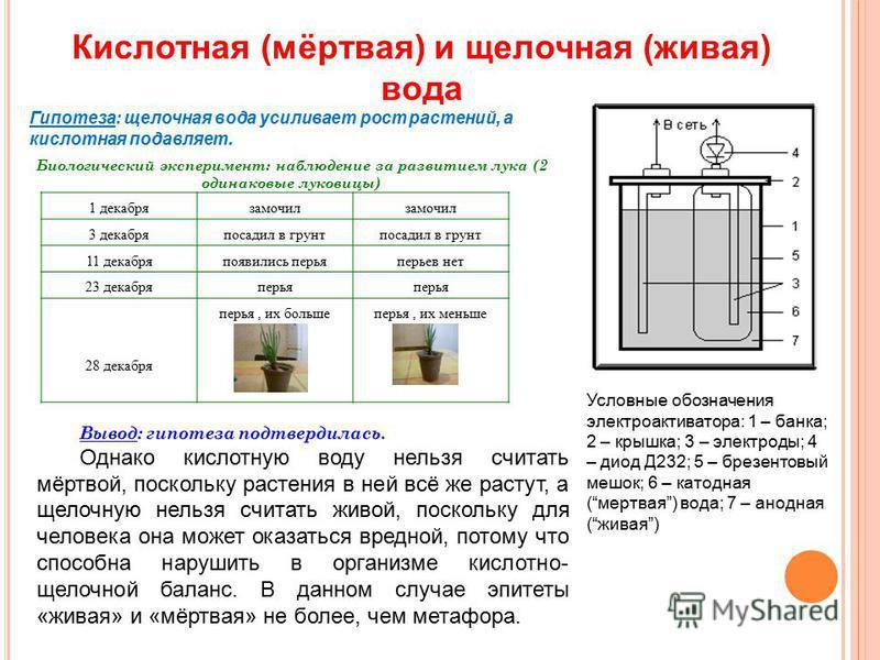 Кислотная (мёртвая) и щелочная (живая) вода Условные обозначения электроактиватора: 1 – банка; 2 – крышка; 3 – электроды; 4 – диод Д232; 5 – брезентовый мешок; 6 – катодная (мертвая) вода; 7 – анодная (живая) Гипотеза: щелочная вода усиливает рост ра