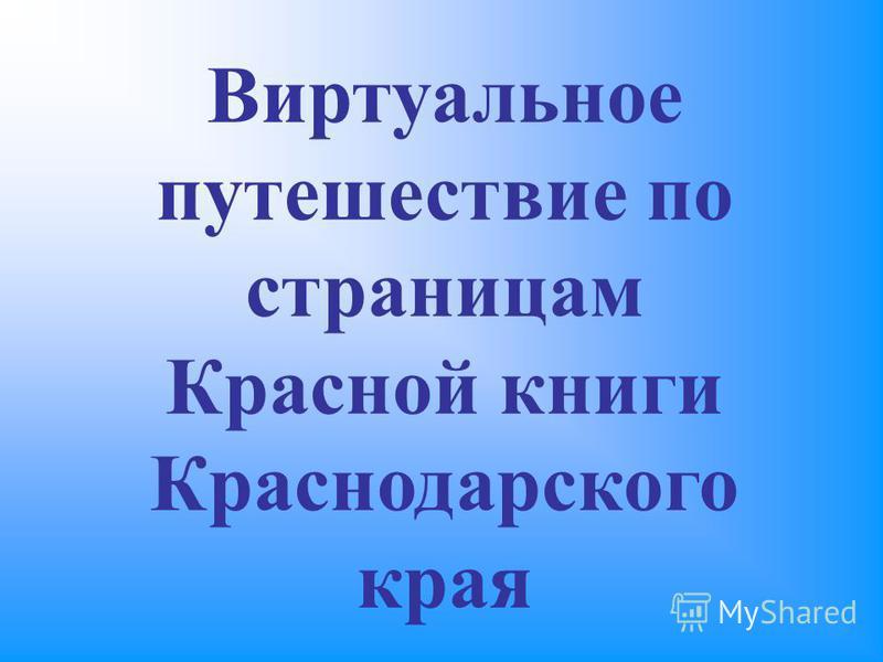 Виртуальное путешествие по страницам Красной книги Краснодарского края