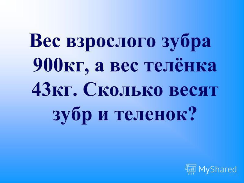 Вес взрослого зубра 900 кг, а вес телёнка 43 кг. Сколько весят зубр и теленок?